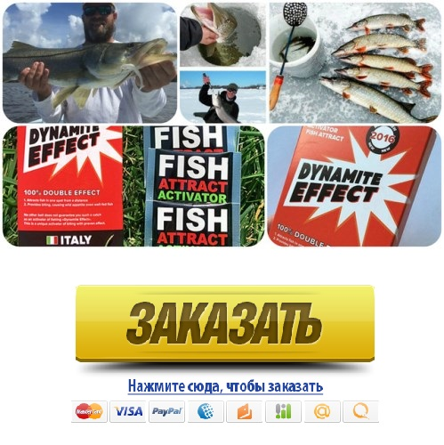 активатор клева fishhungry купить самовывоз